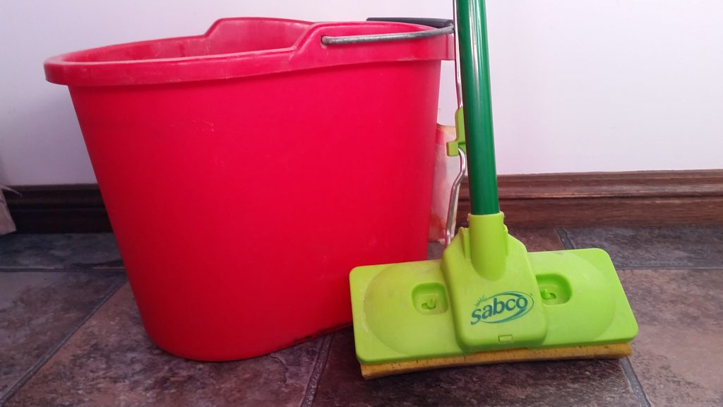 Mop and Bucket Cleaning essentials
