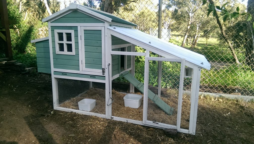 Chicken yard and House