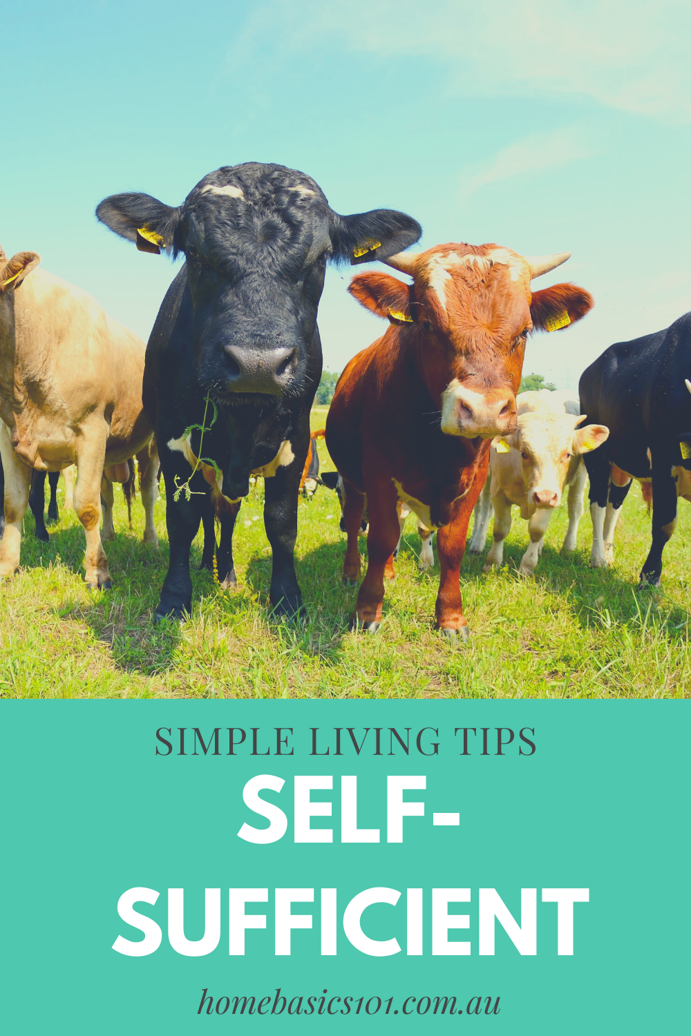 Tips to living a Simple Self-sufficient life
