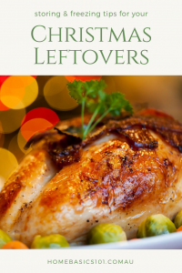Storing Christmas Leftovers