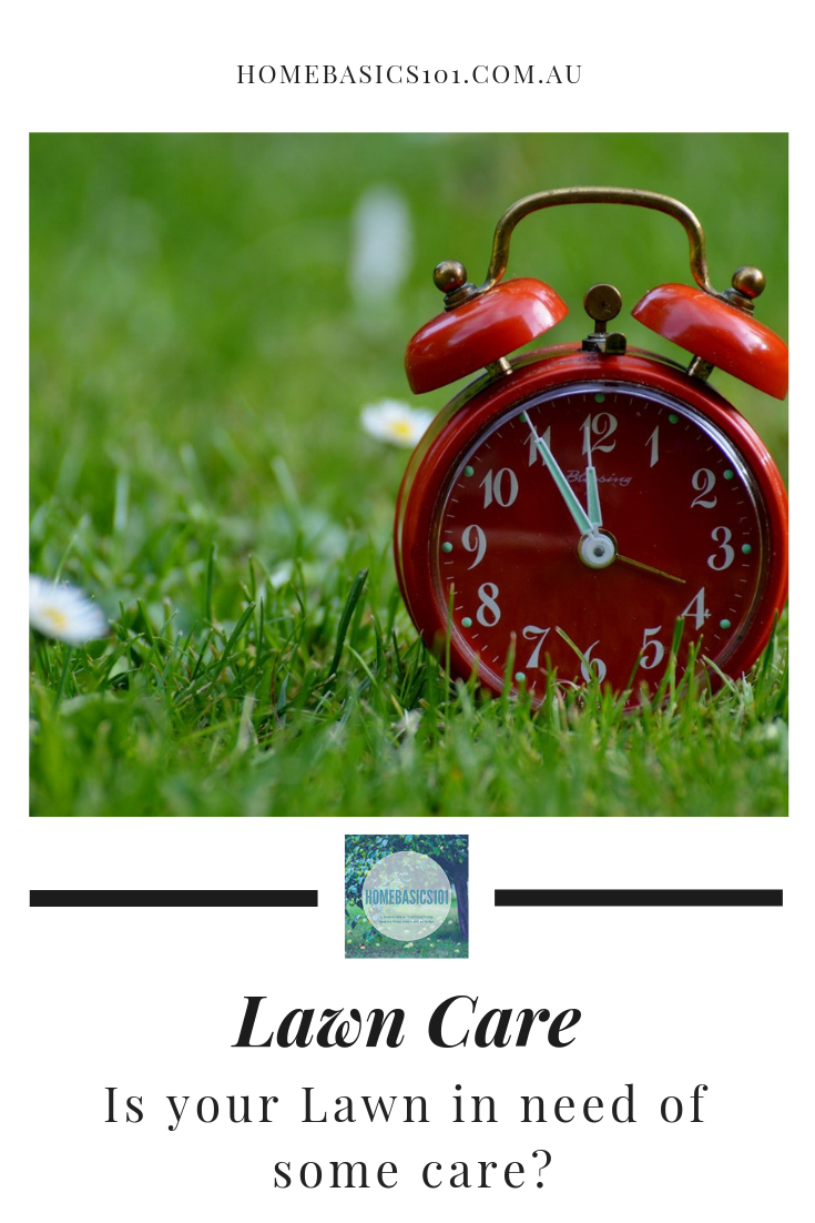 Helpful Tips to help you keep your lawn green and lush all year around