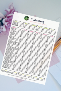 One of the Best Budget Templates and Guides
