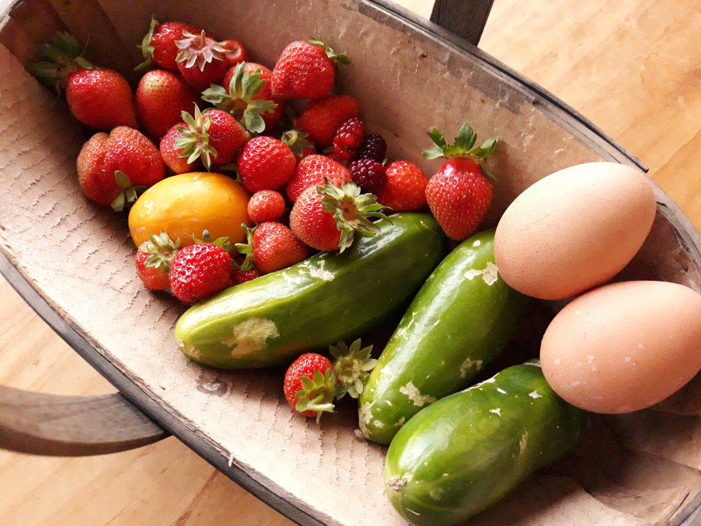 Summer Harvest from our Patch