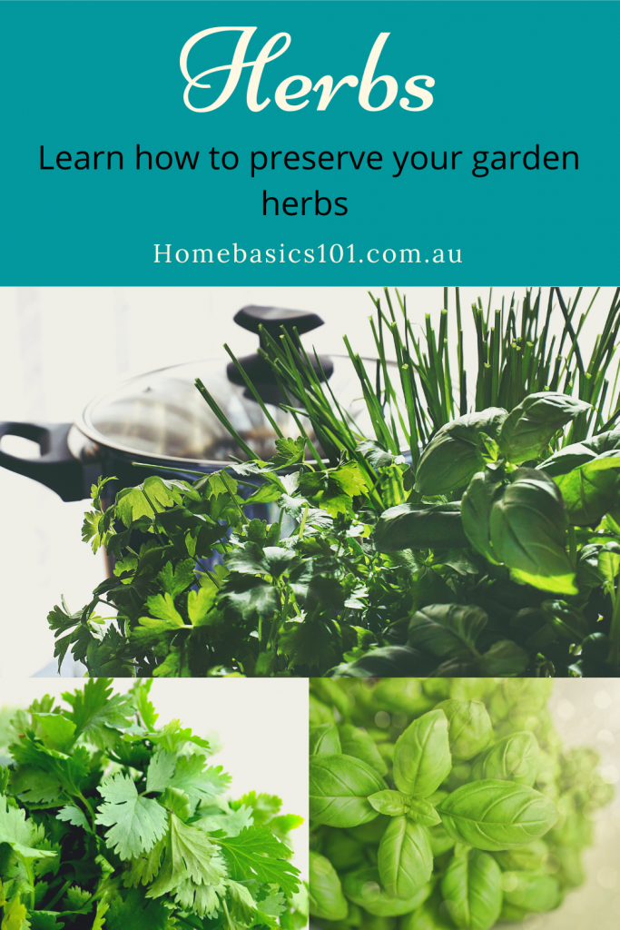 Easy Simple Tips to Drying Herbs in the Microwave